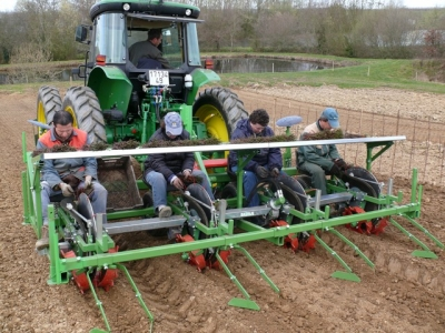 transplanter for nurseries